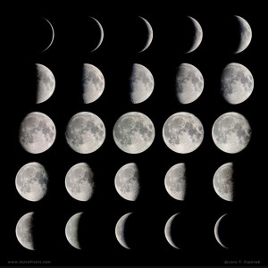We continue to study the phases of the moon. Please have your child look for the moon this weekend and see the changes.